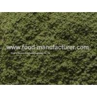 Freeze Dried Vegetables Powder Freeze Dried Celery Powder Manufactures