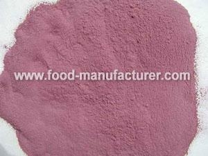 Quality Freeze Dried Vegetables Powder Freeze Dried Sweet Potato Powder for sale
