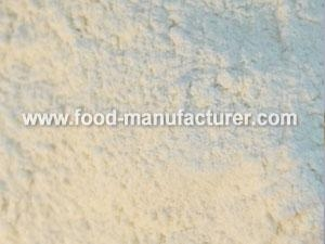 Quality Freeze Dried Vegetables Powder Freeze Dried Garlic Powder for sale