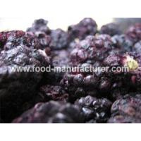 Freeze Dried Fruit Freeze Dried Blackberry Manufactures