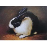 Buy cheap Animal Oil Painting  No.:161157 from wholesalers