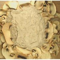 Buy cheap White Button Mushroom powder from wholesalers