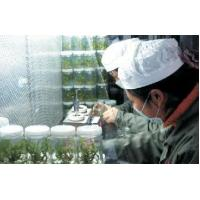 China Tissue Culture Room on sale
