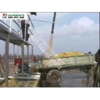 Apple Processing Manufactures