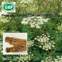 Buy cheap Radix Angelica P.E. from wholesalers