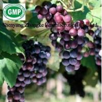 Buy cheap Grape seed P.E. from wholesalers
