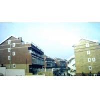 China Real Estate Projects Jinguang  Lvyin Xincun for sale