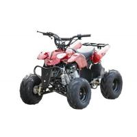 110cc ATV EPA EEC CARB CE APPROVED QUAD Manufactures