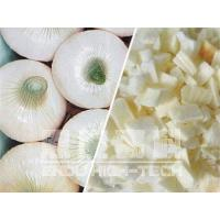 Freeze-dried Onion Manufactures