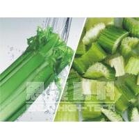 Freeze-dried Celery Manufactures