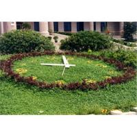 China Flower-bed clock,garden clock, flower clock wholesale
