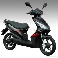 China 500W Electric Scooter wholesale