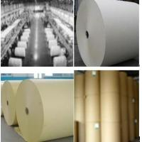 LWC PAPER Manufactures