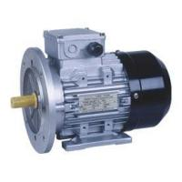 MS THREE PHASE ALUMINIUM HOUSING MOTOR Manufactures