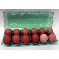 Ovotherm Glass Clear Green 12-Egg Carton, w/No Label