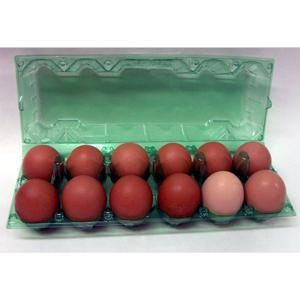 Quality Ovotherm Glass Clear Green 12-Egg Carton, w/No Label for sale