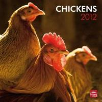 Buy cheap 2012 Chickens Wall Calendar from wholesalers