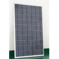 230W30VPolyPhotovoltaicModule Manufactures