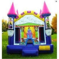 Inflatable Bounce House/Inflatable Bounce House and Slide (LT-BC-121) Manufactures