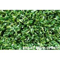 Golf Turf Manufactures