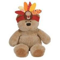 """Ty 8"""" Little Indian Thanksgiving Bear Manufactures"""