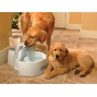 China Drinkwell DOGC-RE Big Dog Fountain on sale
