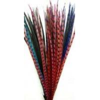 Reeves Pheasant Tails Dyed