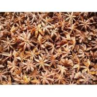 Aniseed Extract (Star Anise Extract, Shikimic Acid) Manufactures