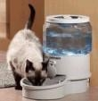 Quality Automatic Pet Feeder Small Ergo Auto Pet Waterer Filtered for sale