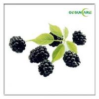 Acai Berry Extract Manufactures
