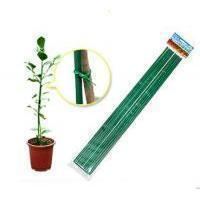 Quality Plant Support Frame (GN0600-066) for sale