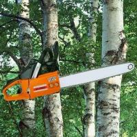 Buy cheap Chain Saw Detail>> from wholesalers