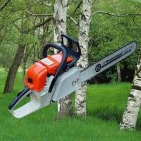 Buy cheap Chain Saw from wholesalers