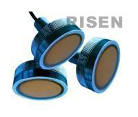 RISEN-Ultrasonic sensor series Ultrasonic underwater sound sensor-500m Manufactures