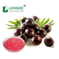 Anthocyanidins Extract Brazilian Acai Berry Extract Manufactures