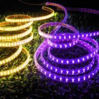 CE & RoHS approved! LED Strip Light SMD 5050 Double Row Purple Manufactures
