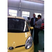 EEC/COC 100km Speed, 10KW AC motor Electric Car TS100089