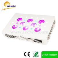 Sun Flower series LED Grow light Manufactures