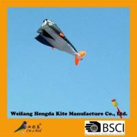 outdoor product sport item whale kite Manufactures