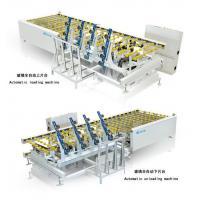 ESPT/EXPT Glass Automatic Loading/Unloading Machine Manufactures