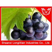 China Antioxidant Ingredients Grape seed extract powder on sale