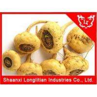 Testosterone Supplement Maca root extract powder Seller Manufactures