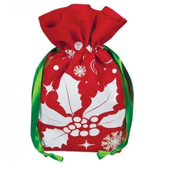 Model cr210 environmentally friendly holiday gift bag for Small and friendly holidays