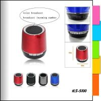 Bluetooth Products HS-5100 Bluetooth Speaker Manufactures