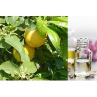 Bergamot Fragrance oil-BS68933 Manufactures
