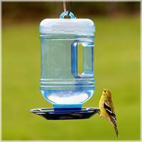 China Perky-Pet Water Cooler Bird Waterer on sale
