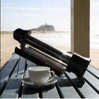 Buy cheap Sun Rocket from wholesalers