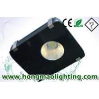 80W LED Tunnel Lamp