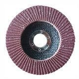 China Flap Disc for Metal