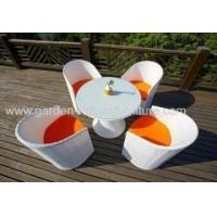 Dining set PE rattan garden dining table and chair Manufactures